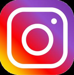 Seguici sui nostri socials  Instagram